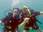 PADI Discover Scuba Diving at Mae Haad Reef