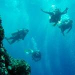 Great Diving at Sail Rock with the Chaloklum Team