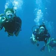 Chaloklum/Koh Phangan Scuba Diving update, October 2012.