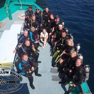 A hectic SCUBA Diving week on Koh Phangan…
