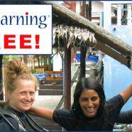 PADI eLearning for Free !
