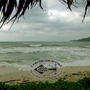 Welcome to the Monsoon Season on Koh Phangan